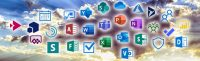 Office 365 ONGs